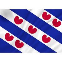 Vlag Friesland 1500 x 2250 mm